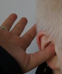 Jeter d'oreille et de doigt !