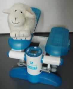 Marchounet, le nouveau copain de Petit Mouton