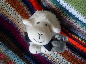 Petit Mouton en noeud pap pour sa Cécylou !