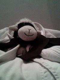 Judoka Petit Mouton