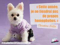 SOS homophobie chien