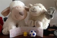 Copain Mouton