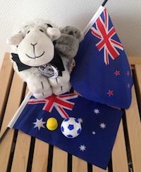 Blog drapeaux Oceanie