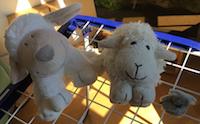 blog-bain-petit-mouton-bis