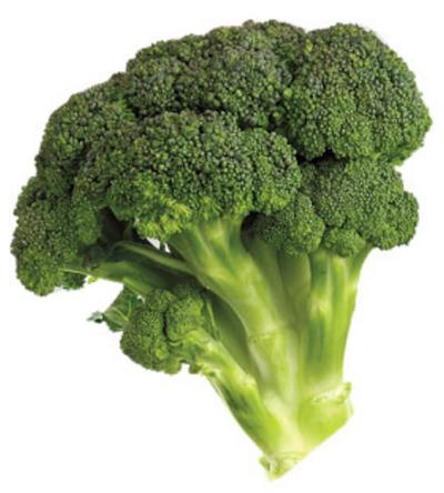 Un brocolis