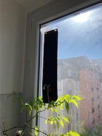 Un panneau solaire portatif est suspendu à l'interieur de ma fenêtre au dessus d'une plante d'intérieur; Le soleil brille.