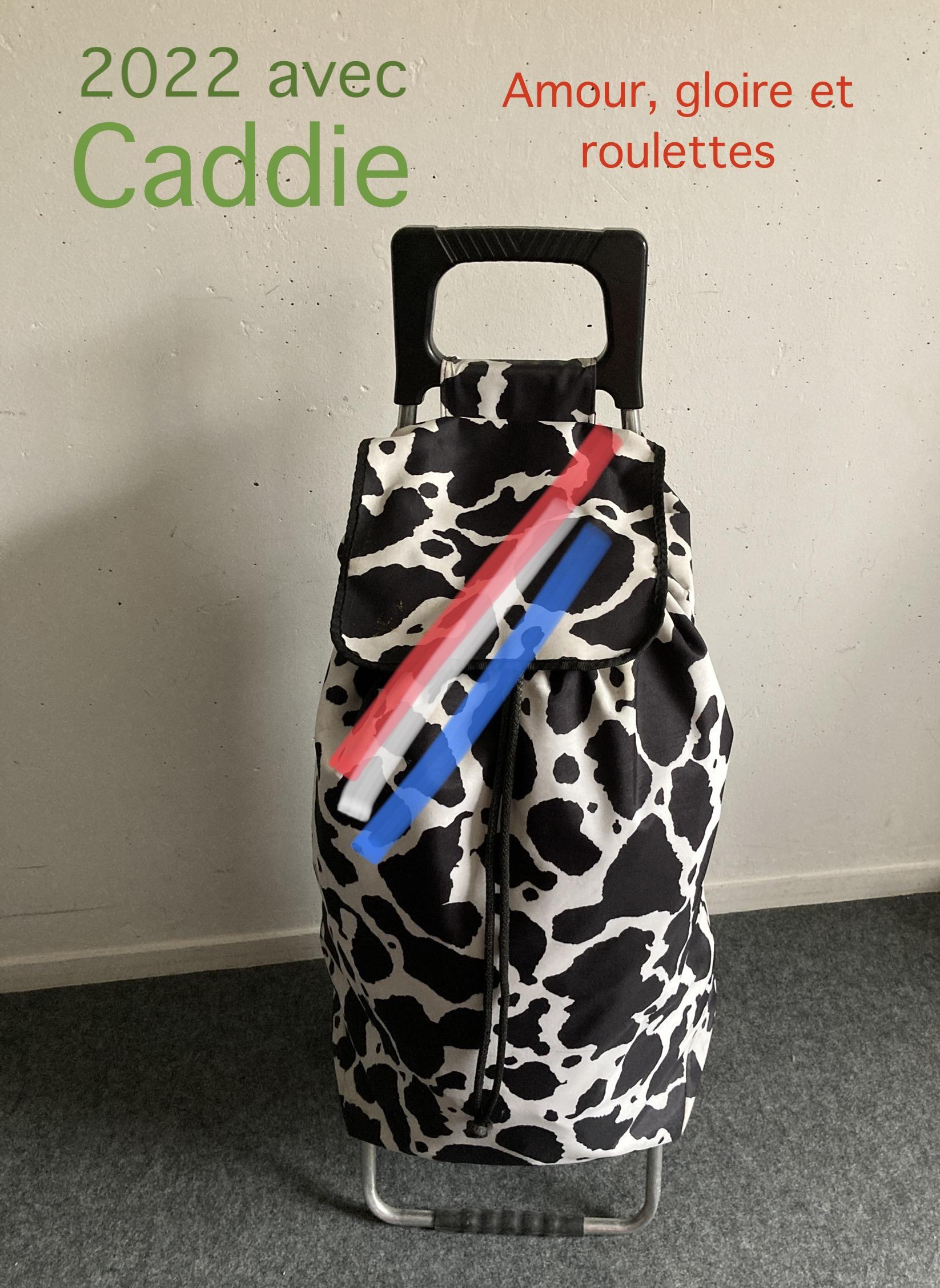 Caddie, barré de tricolore, avec en slogan : 20222 avec Caddie, amour, gloire et roulettes !